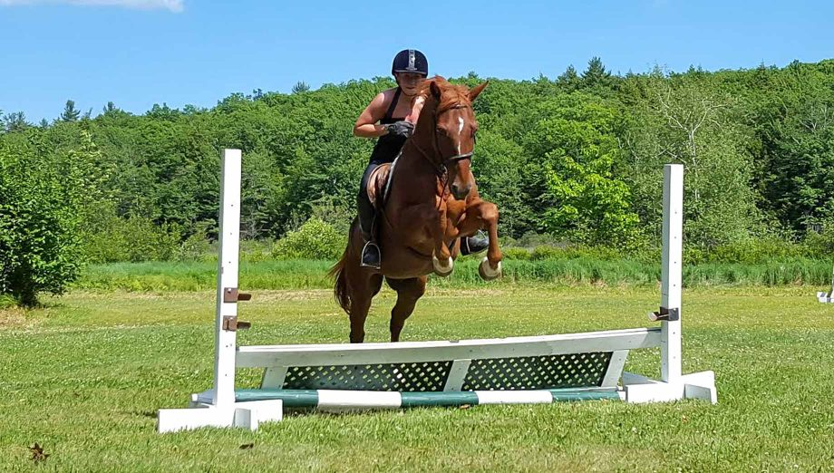 Horseback riding and jumping over an obstacle