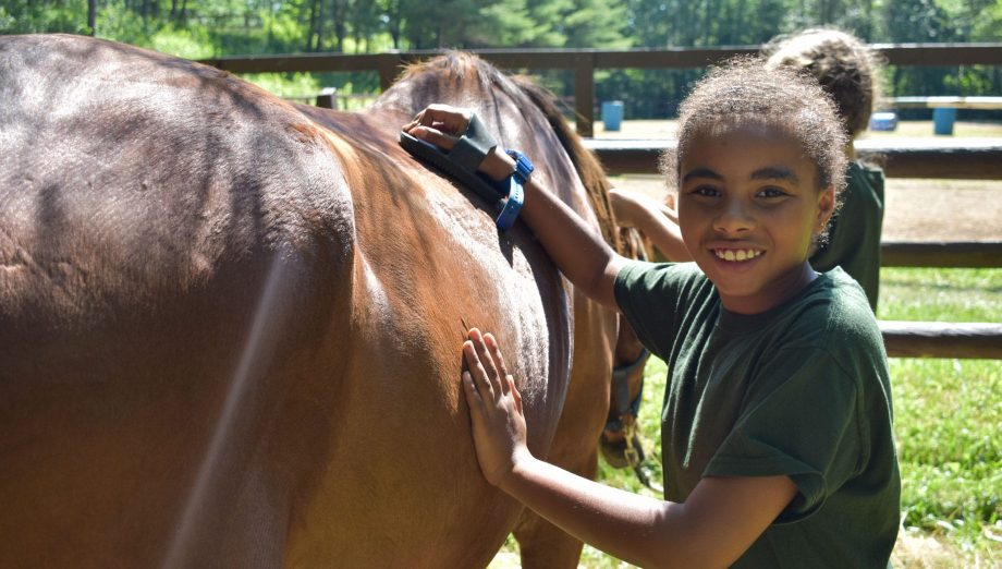 Camper grooming a horse